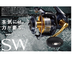 Shimano 15 Twin Power SW 6000XG