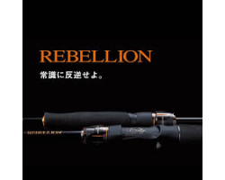 Daiwa 20 Rebellion 6102MHRB